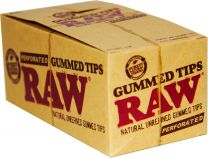 Raw Gummed Perforated Tips 24 Pack Per Box